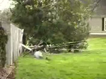 Severe Storm Hits Nelson County
